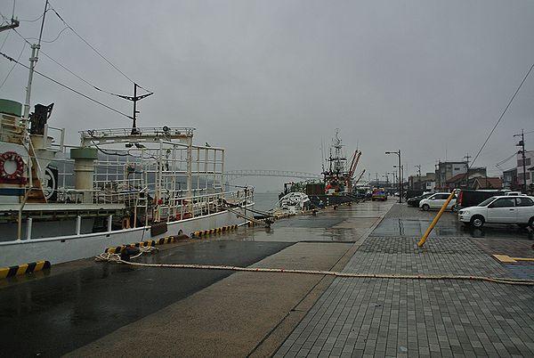 1228_1305_port