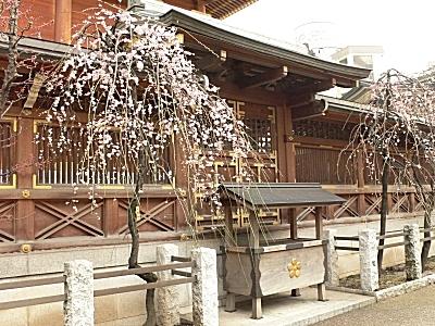 yushima_1