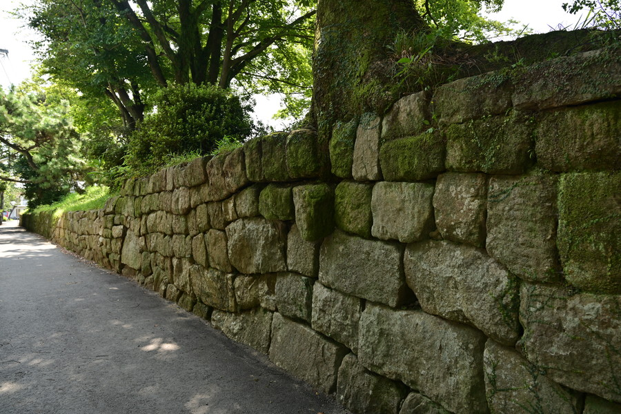 20190914_yanagawa_29